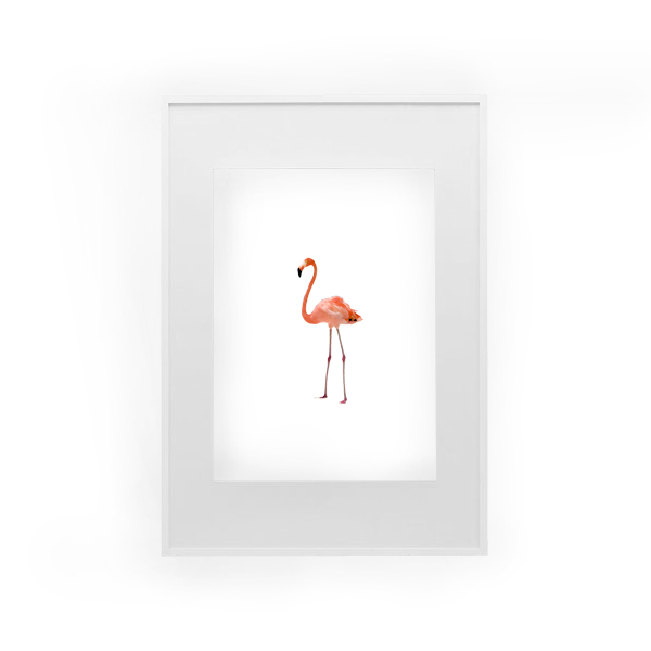 image relating to Flamingo Printable called Hump working day giveaway Flamingo Printable - Dorsey Types